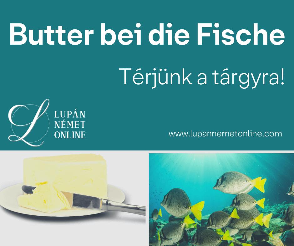 Butter bei die Fische 1 1