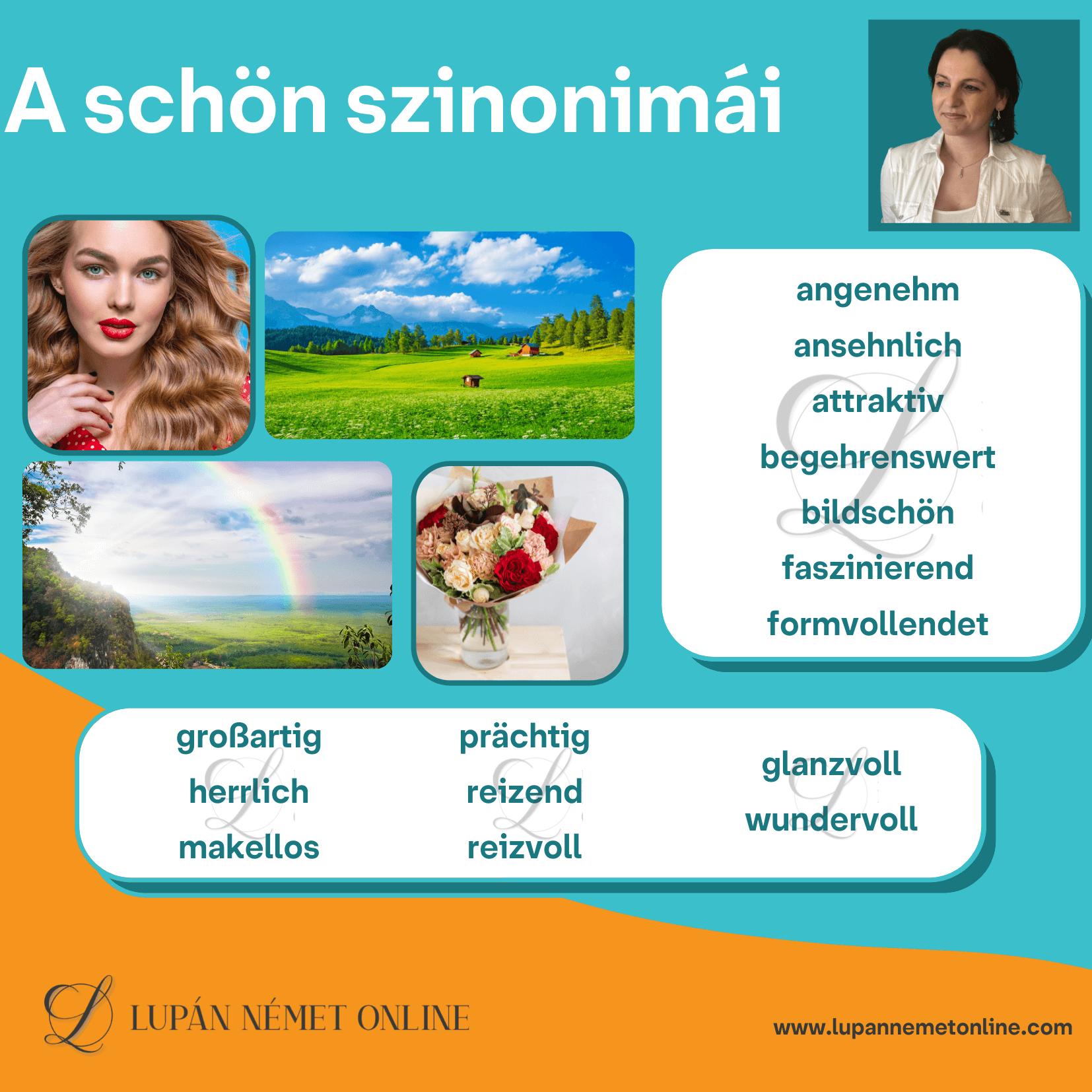 Schön_szinonimái