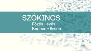Szokincs_essen_eves_fozes_kochen-1