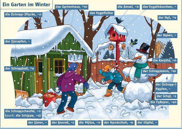 garten im Winter 1