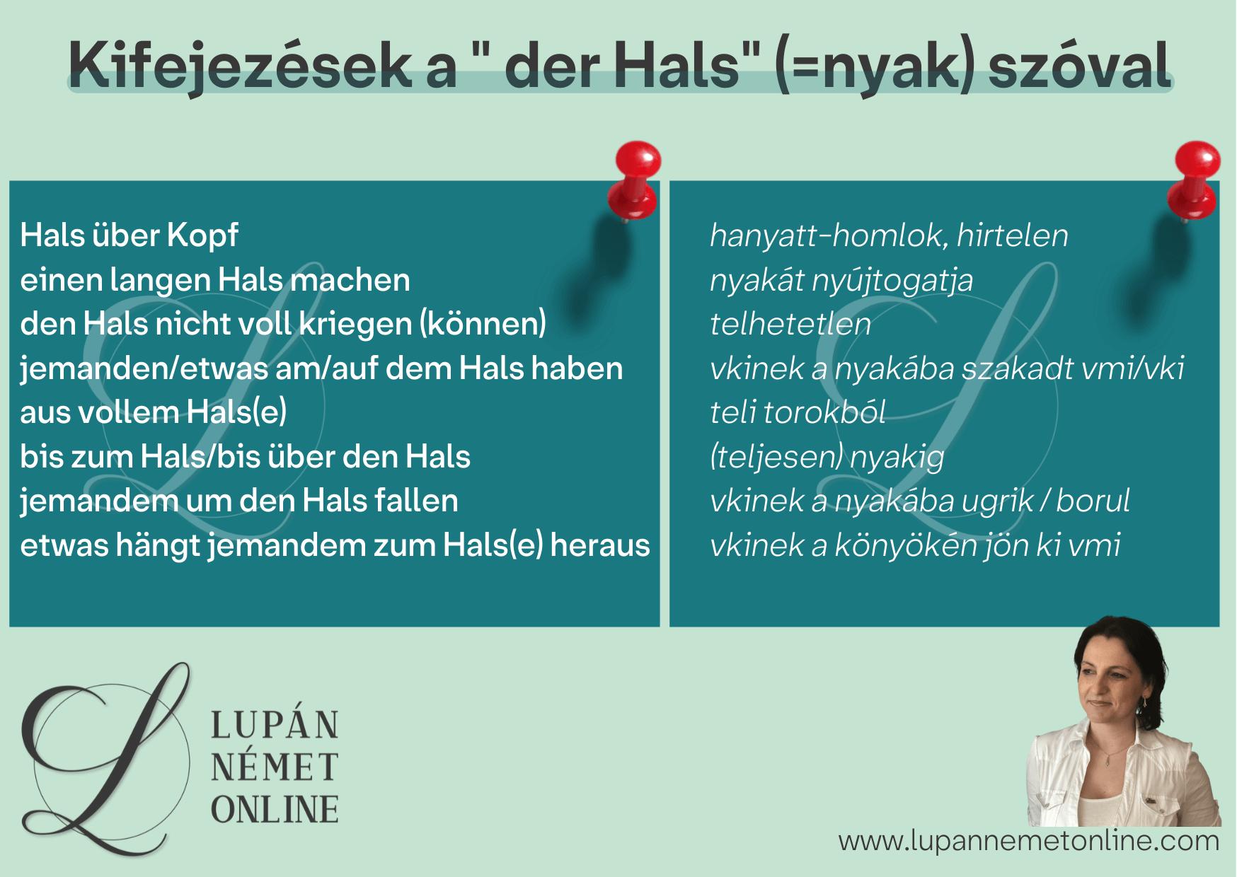 kifejezesek_hals