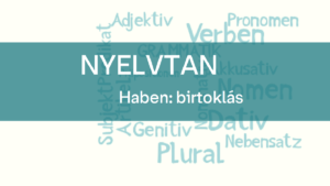 nyelvtan_haben_birtoklas (1)