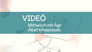 video Mittwoch mit Agi allati kifejezesek 1