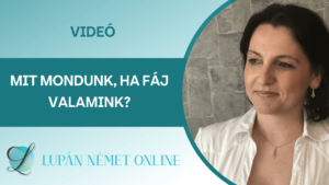 video_faj_vmi