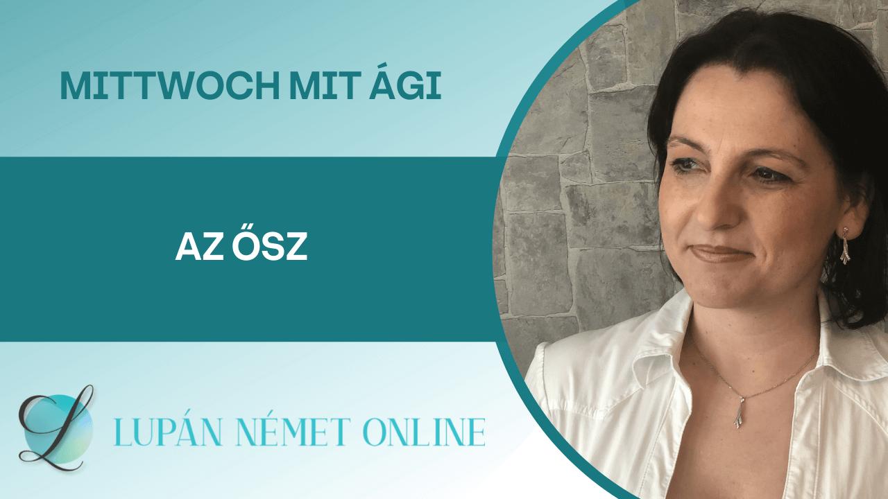 video_mittwoch_mit_Agi_osz