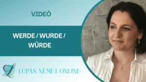 video_werde